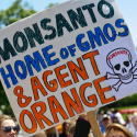 Image for Take Action: Tell the EPA: Stop a New Onslaught of 2,4-D 'Agent Orange' Toxins!, Tell Scotts You're Boycotting All Its Products until the Company Drops Plans to Sell GMO Grass, Stop Massive Expansion of U.S. Gas Exports