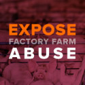 Image for Take Action: Protect Those Who Expose Abuse At Factory Farms; Let's Keep Up The Fight To Stop The TPP; Tell Obama to Protect the Arctic